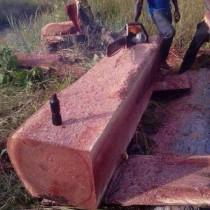木材家具进口要提供什么资料报关?-