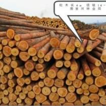 木材进口报关相关流程巨晖