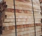 海南橡胶木专业供货商|海南橡胶木价格