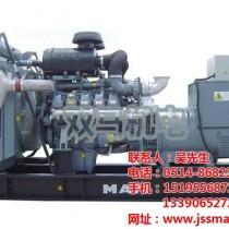 国产柴油发电机组,柴油发电机组,双马机电图片