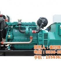 元氏柴油发电机组、德曼动力(图)、柴油发电机组图片