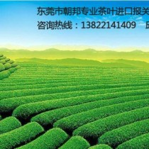 黄埔港绿茶进口代理清关|一般贸易进口流程图片