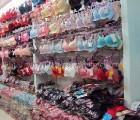爆款内裤供应,就在大连雅津贸易,批售女式时尚内裤