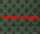 供应服装用马尾衬布天然马尾原料纺织