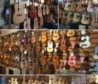 广州TYCOON泰坤非洲手鼓金贝鼓卡宏鼓专卖店,成乐时代音乐