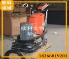 可调速环氧地面抛光机 四盘十二磨头研磨机 地坪施工抛光机