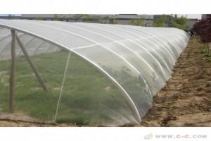 绿色蔬菜种植采用60目防虫网防虫效果好