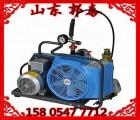 德国宝亚空气充气泵juniorii代理商直销德国现货