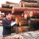 泰国橡胶木进口需要什么资质