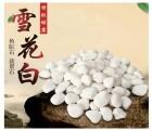 厂家直销园艺用白色小石头园林铺路造景专用白色鹅卵石 白石子