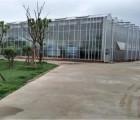 休闲观光旅游温室大棚工程建设厂家就在山东青州鲁源