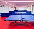室内pvc运动地板价格,运动地板品牌排行榜