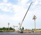 达州玉兰灯 15米玉兰灯厂家价格多少