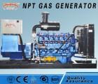 沼气发电机组_耐普特小型沼气发电机的价格