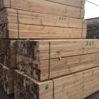 太仓铁杉供应商