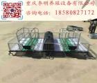 猪床 养殖设备 母猪产床仔猪分娩栏 连体产床猪床 养殖设备