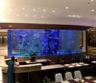 杭州大型亚克力鱼缸