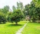 供西宁园林绿化和青海石材雕塑特点