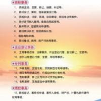 济宁进出口权 工商执照 圣佳代理21年单位