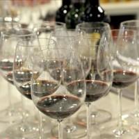法国葡萄酒的知识分类