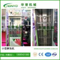华誉HY-XJD型小型冻肉类解冻机