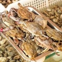 福州活海鲜进口报关国外需要办理哪些资料丨如何办理