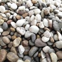 变压器鹅卵石厂家 河南5-8公分天然鹅卵石厂家批发价格