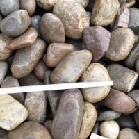 变压器下面用5-8公分鹅卵石  河南焦作鹅卵石厂家批发