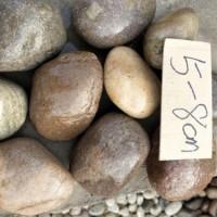 变压器用5-8公分鹅卵石  河南安阳天然鹅卵石厂家批发价格