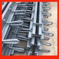 郑州桥梁伸缩缝 D80型伸缩缝 D60型伸缩缝厂家