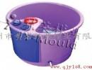 台州供应足浴桶模具,注塑模具