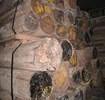 广州为你详细解答欧美阔叶黄檀木材进口报关的费用组成