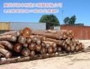 广州黄埔港木材进口报关|原木|板材|木方|木材进口报关费用|黄埔港木材进口费用有哪些|具体用来做什么的