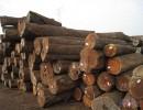 东莞木材进口报关报检手续 原木进口清关代理流程 费用