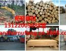 太仓木材加工厂