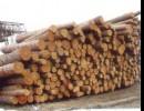 木材进口代理+原木进口代理+木方进口代理+木家具进口代理