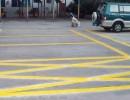 仓库划线、车库划线、停车场改造