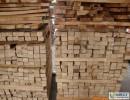 铁木豆木材进口报关