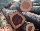 越南木材进口报关/原木木材进口报关/木板进口报关