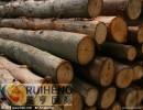 非洲桃花心原木材进口清关代理丨进口非洲桃花心原木材注意事项