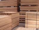 俄罗斯精品柞木板材