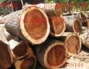 加拿大原木进口申报