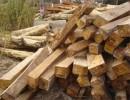 上海进口原木材清关公司