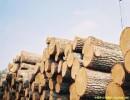 广州黄埔港木材进口清关代理公司