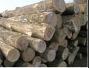 俄罗斯木材进口报关|美国木材进口报关代理|木材进口清关公司