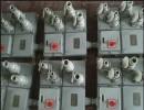 专业生产  BXX52-4/16防爆检修电源插座箱,防爆插座