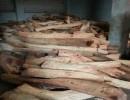 东莞哪里有越南黄花梨原木 现货供应越南黄花梨