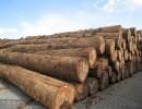 印尼黑酸枝木材进口报关手续报关代理价格 上海木材进口报关公司