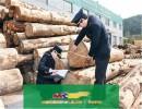 上海木材进口报关手续