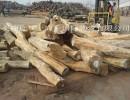 上海木材进口报关报检代理 上海专业木材进口清关代理